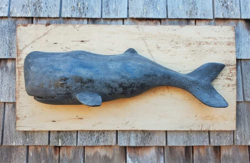 Large black sperm whale Wall Art