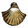 scallop shell brass door knocker coastal beach home